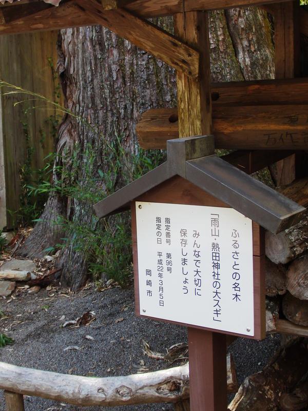 ふるさとの名木「雨山・熱田神社の大スギ」