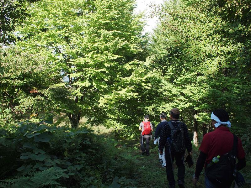 walk20190924-6.JPG